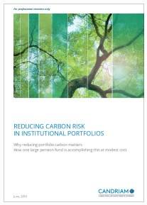 Cover Reducing Carbon Risk In Institutional Portfolios